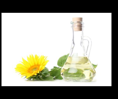 Óleo de Girassol para Ajudar no Tratamento da Psoríase
